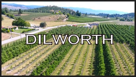Dilworth-With-Border